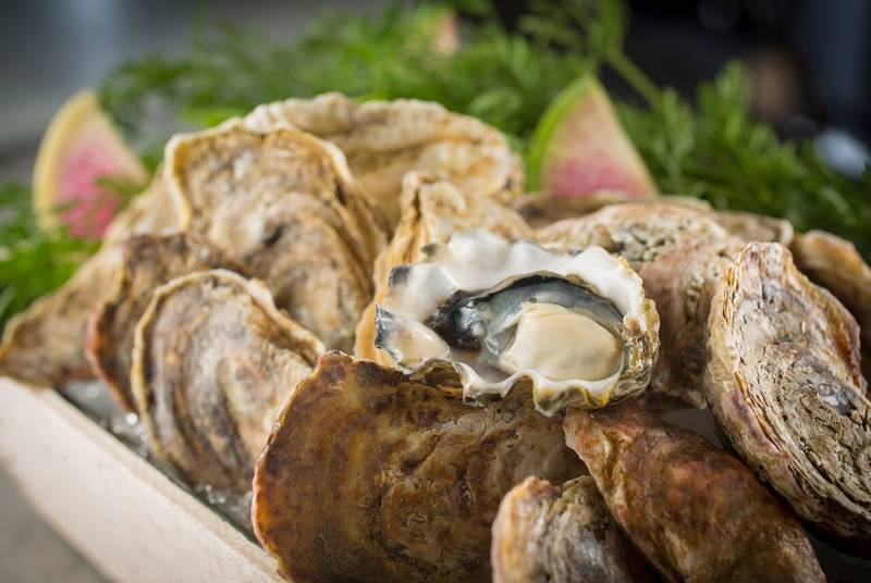 Where to Celebrate National Oyster Day in Chicago