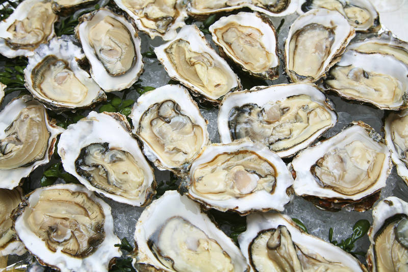 National Oyster Day at III Forks