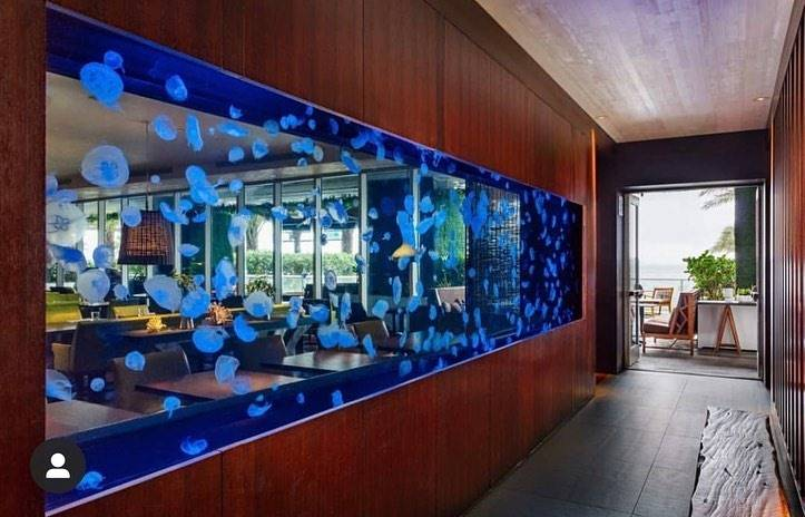 "STEAK 954 FORT LAUDERDALE STEAKHOUSE ""Outstanding Restaurateur"" award"