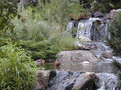 Lake Katherine Nature Center & Botanic Gardens