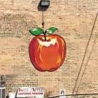 Red Apple / Czerwone Jabluszko - Avondale